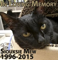 In loving memory: Siouxsie Mew, 1996-2015