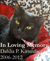 In Loving Memory: Dahlia P. Kittenface. 2006-2012
