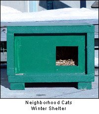 Neighborhood Cats' winter shelter for feral cats