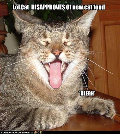 "LOLcat, with text reading ""Lolcat DISAPPROVES of ur cat fud. BLERG"""
