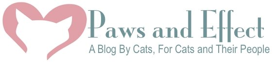 Cat Advice | Paws and Effect