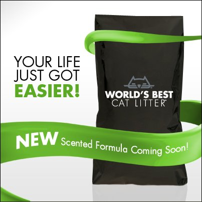 World's Best Cat Litter mystery formula