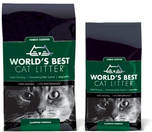 Review: World's Best Cat Litter Forest Scented Clumping Formula