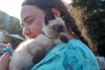 Woman hugging Siamese kitten. Photo CC-BY Kathryn Decker