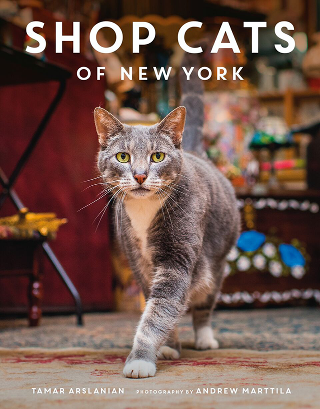 Shop Cats of New York is a great holiday gift for your favorite cat lover.