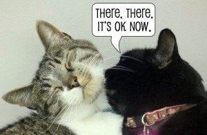 """Thomas and Siouxsie with a speech bubble reading """"There, there, it's OK now."""""""