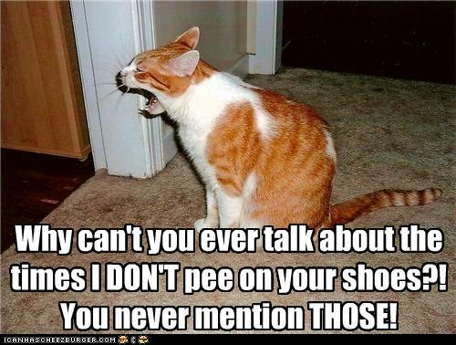 """LOLcat with caption """"Why can't you ever talk about the times I DON'T pee on your shoes? You never mention THOSE!"""
