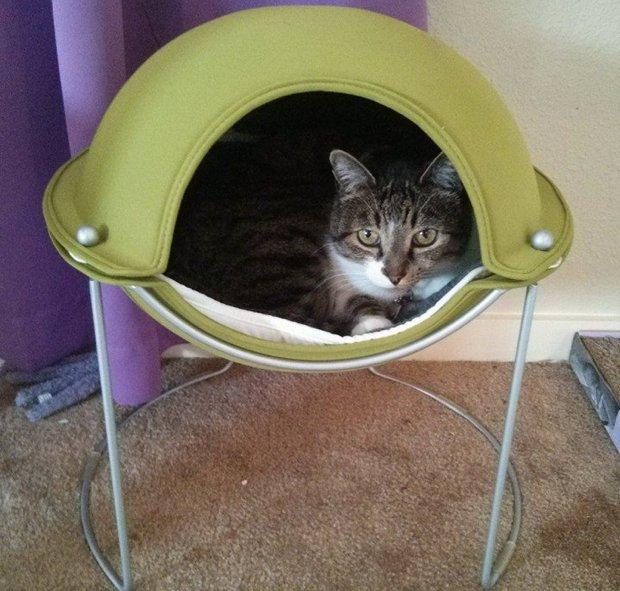 Thomas in a Hepper Pod