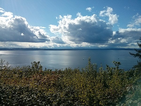 View of Puget Sound and the Olympic Mountains from Sunset Park