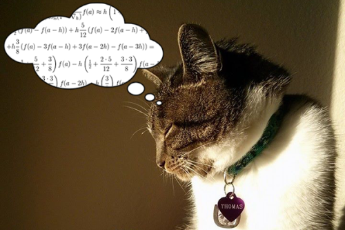 Thomas with a thought bubble full of differential equations