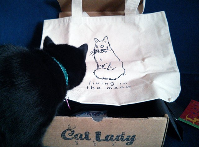 Living In the Meow tote bag